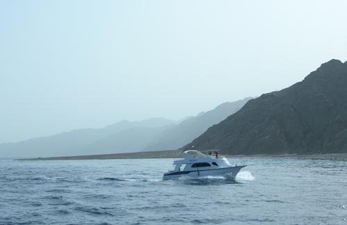 Дайвинг-сафари на корабле